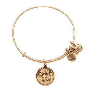 Disney vacation club bangle from alex and ani